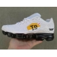 china cheap Nike Air Max Plus TN shoes free shipping