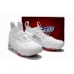 china cheap nike lebron james shoes XV ep